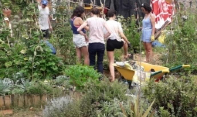 El 14 i 15 de setembre se celebra un curs d'introducció a la Permacultura i Hort Urbà a ConnectHort de Barcelona.