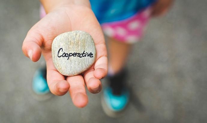 """Una nena que porta una perdra a la mà on posa """"Cooperative"""". Font: Free-Photos (Pixabay)"""