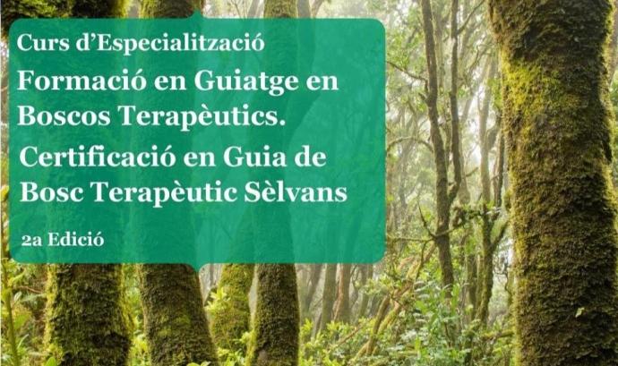 Formació en Guiatge en Boscos Terapèutics. Certificació en Guia de Bosc Terapèutic Sèlvans.