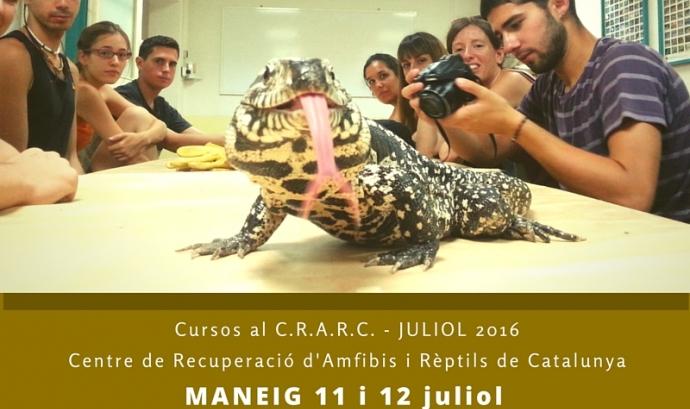 6º edició del curs de maneig de rèptils al Crarc, organitzat per Animal Latitude (imatge: animallatitude.org)