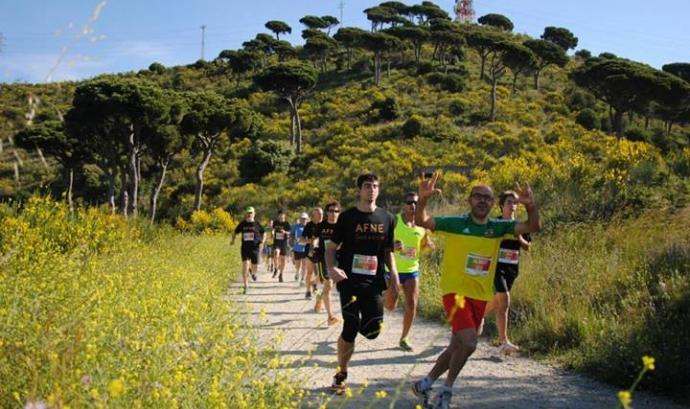 Imatge de la cursa 2013 Font:
