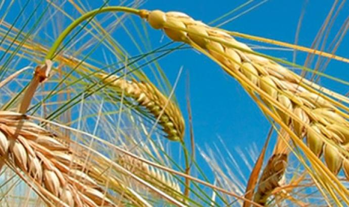 Laboratori d'idees per una indústria alimentària sostenible (imatge: UAB)