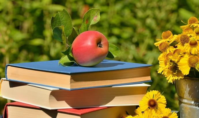 Poma damunt de llibres Font: Pixabay