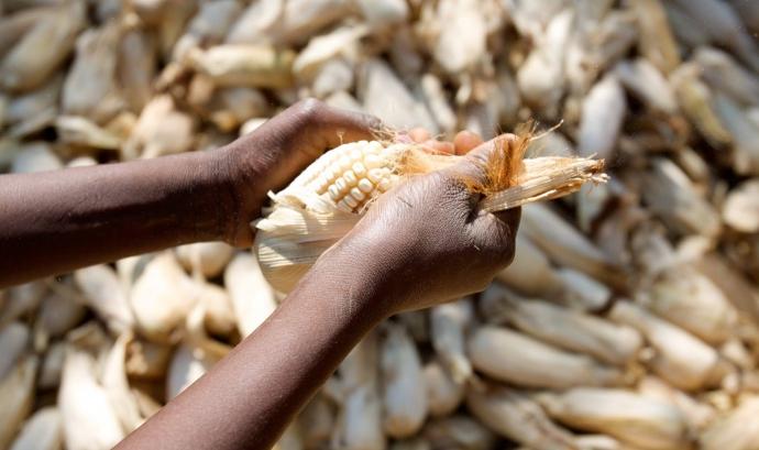 Emergència Alimentària Àfrica i Iemen Font: Stephen Morrison/Africa Practice