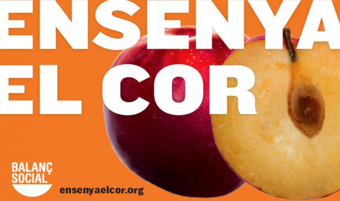 Ensenya el cor, fes balanç social. Font: http://ensenyaelcor.org/