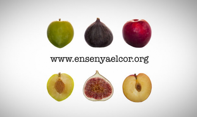 Imatge de la campanya Ensenya el cor, fes balanç social Font: