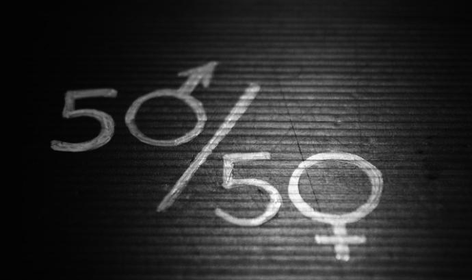 El pla d'igualtat, necessari en aquelles entitats amb 50 o més persones treballadores. Font: Pixabay