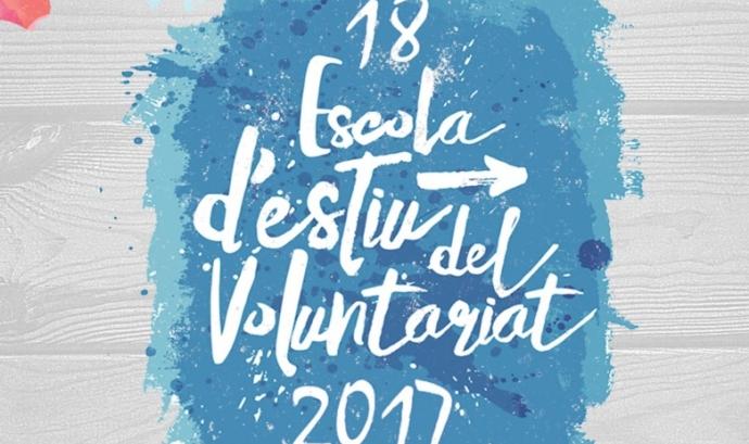 Cartell de la formació: Font Voluntariat.org