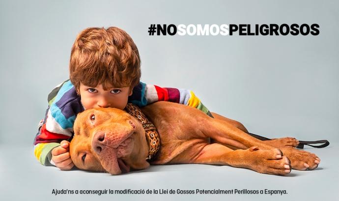 La campanya #NoSomosPeligrosos estarà en marxa tot l'estiu per recaptar el màxim de firmes en contra de la llei actual de gossos perillosos. Font: FAADA. Font: FAADA