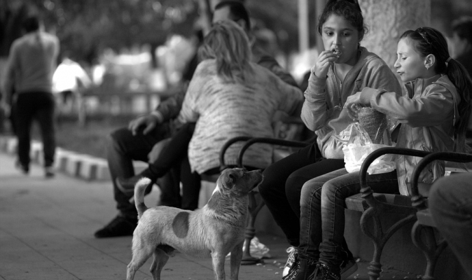 Noies banc menjant i gos mirant Font: Pixabay