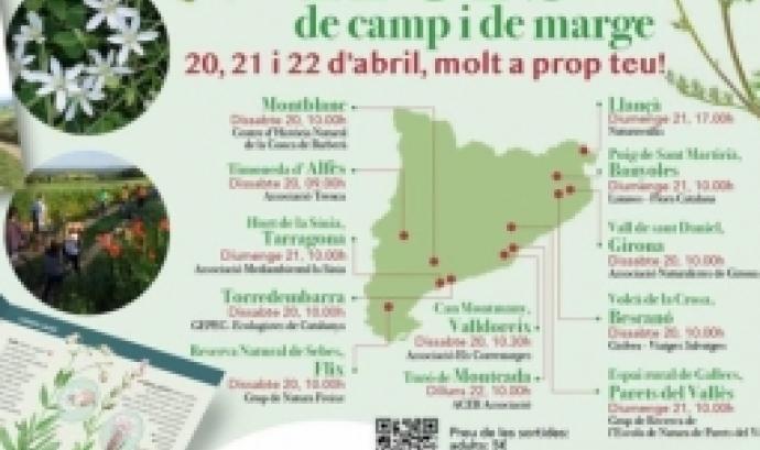 12 sortides per aprendre sobre les flors de camps i de marge de Catalunya