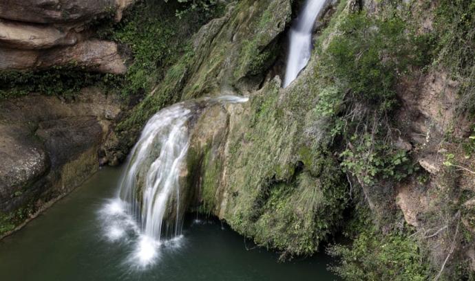 Jornada de voluntariat ambiental al riu Glorieta amb l'Associació Cen (imatge: associació cen)