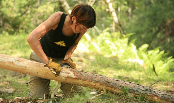Tasques de manteniment del bosc / Font: Projecte Boscos de Muntanya Font: