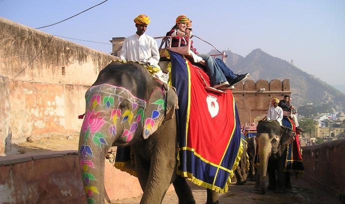 Elefant indi. Font: Pixabay