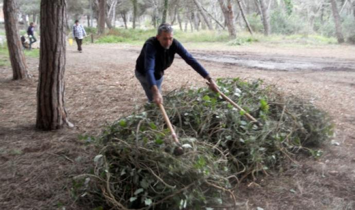 Jornada de Voluntariat Ambiental al Delta del LLobregat amb Depana (imatge:depana.org)
