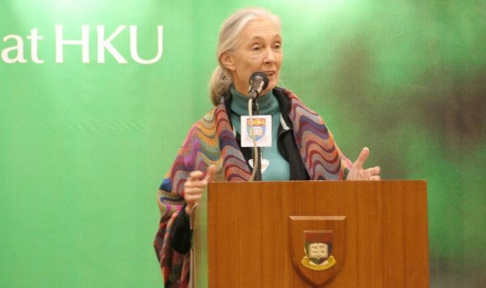 Jane Goodall. Fotografia de Paul Wan.  Font: