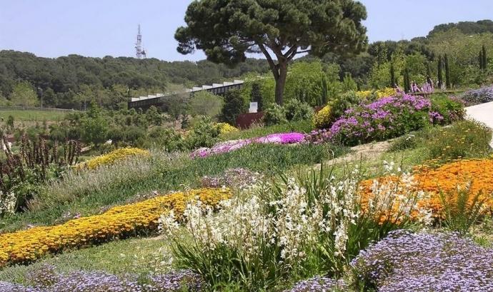 Planta't al Botànic (Barcelona, cada primer diumenge de mes). Font: