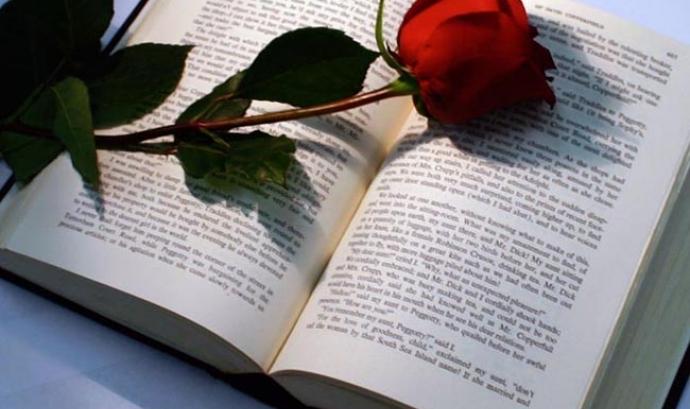 Llibre amb rosa a sobre. Font: cultura21.comunicacio21.cat Font: