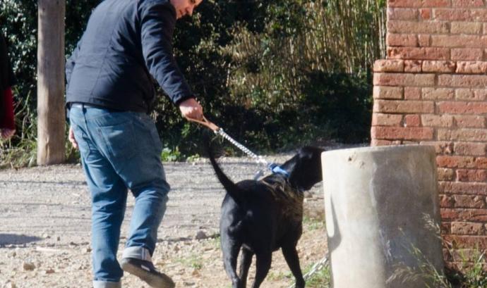 Voluntaris de la LLiga passejant a un gos (imatge:protectorabcn.es) Font: