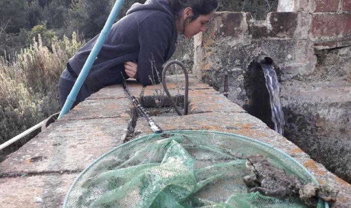 Marina Codina, tècnica de projectes de l'Associació Hàbitats. Font: Ass. Hàbitats. Font: Associació Hàbitats