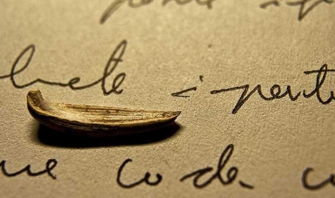 Navegant entre paraules... Imatge CC BY-NC-ND 2.0 de Joan Abella (...) Font: