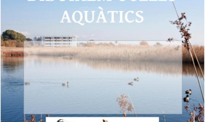 Observar i conèixer els ocells aquàtics als Muntanyans