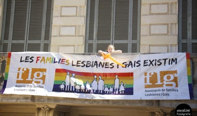 El matrimoni igualitari avança en reconeixement. Font: Associació de Famílies Lesbianes i Gais