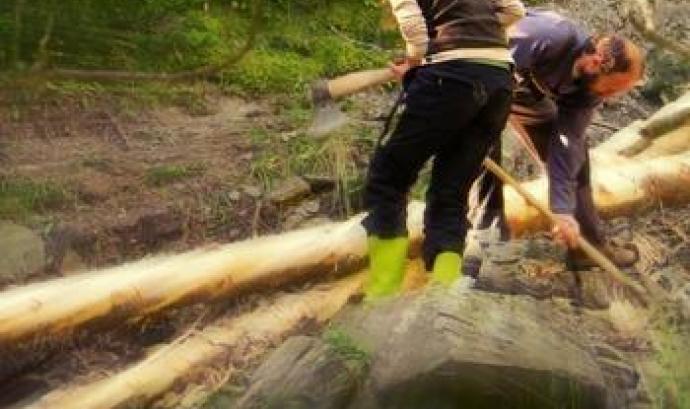 Una setmana al bosc, amb Projecte Boscos de Muntanya Font: