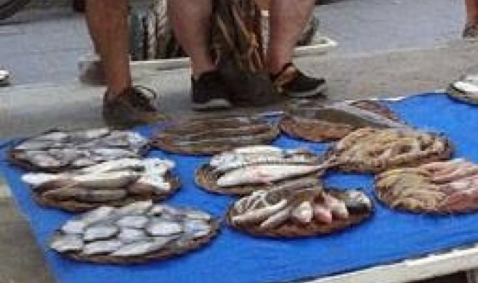 Consumir peix de forma sostenible és possible amb el Peix de Custòdia (imatge:Submon)