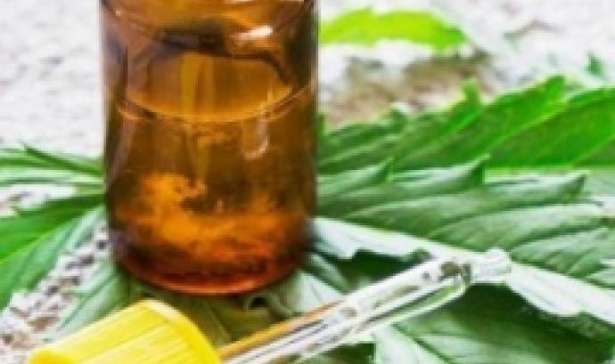 Dolor i qualitat de vida, ús terapèutic del cànnabis