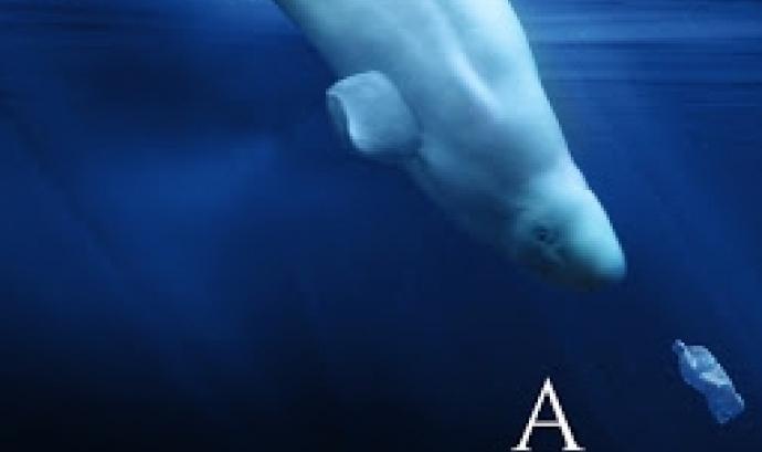 """Projecció del film """"A Plastic Ocean"""" durant el Ficma (imatge: Plastic Ocean)"""