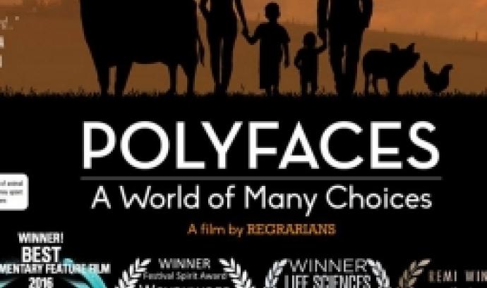 Estrena a Ficma de Polyfaces, dimecres 9 de novembre als Cinemes Girona (imatge: polyfaces)