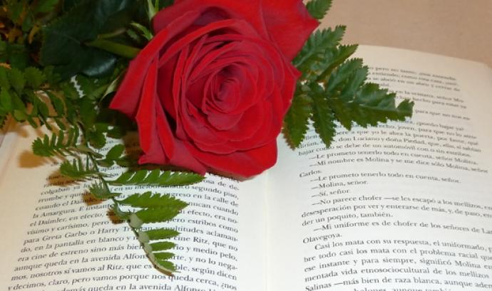 Imatge rosa i llibre Font:
