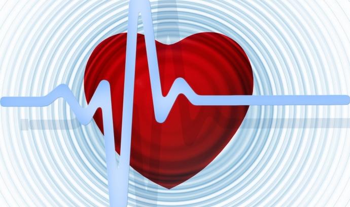 Estat del cor. Font: Pixabay