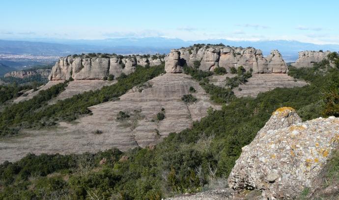 Parc Natural de Sant Llorenç de Munt i l'Obac / Font: Wikimedia