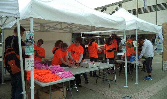 Carpes a la Plaça Cívica de la Setmana Saludable i Sostenible del curs 2014-15