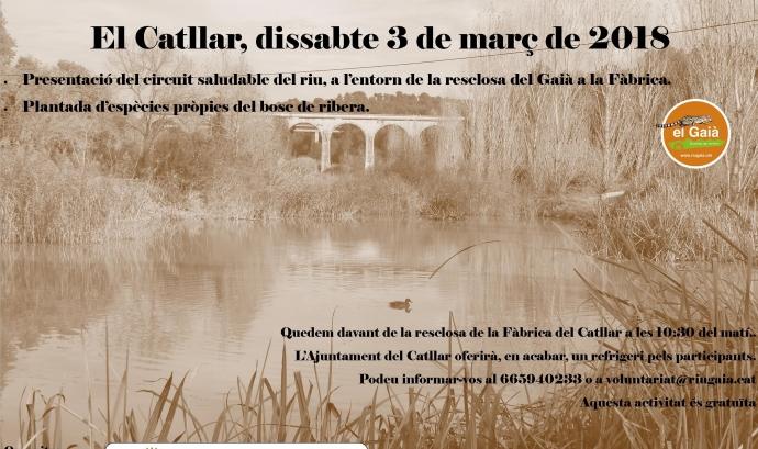Dia Mundial de la Natura al Catllar