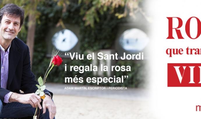 7 formes de regalar solidaritat per Sant Jordi