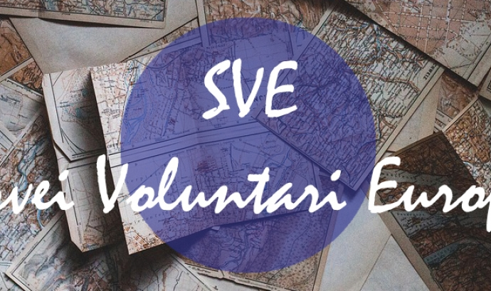 European Volunteer Service (EVS en anglès)