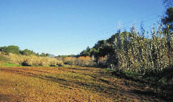 Adenc i Gpenat presenten el projecte Parc Grípia Ribatallada a Sabadell (imatge: anellaverda.terrassa.cat)