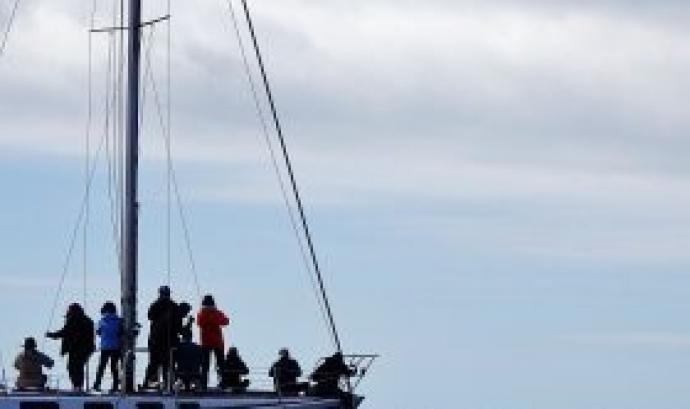 Sortida en vaixell per veure cetacis (imatge: depana.org)