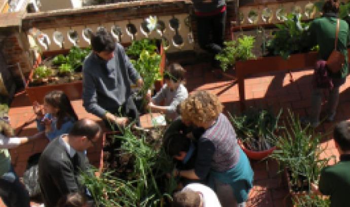 Hort urbà al terrat de Lluïsos de Gràcia