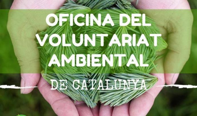 El portal voluntariatambiental.cat dedicat a les persones interessades al voluntariat ambiental (imatge: xvac.cat)