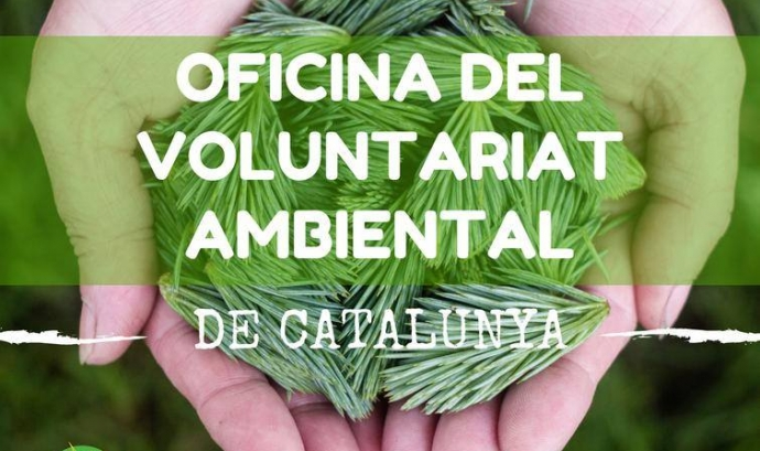 El portal voluntariatambiental.cat posa en contacte persones i entitats ambientals. (imatge: voluntariatambiental,cat)  Font: