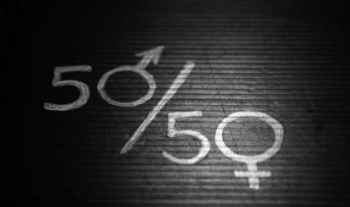 La creació de l'observatori era una de les mesures a complir contemplades a la Llei d'igualtat de gènere del 2015 Font: Pixabay