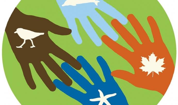 Sessió sobre la gestió del voluntariat  en les entitats ambientals (imatge: xvac.cat) Font: