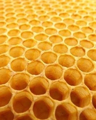 Ajuts destinats a la millora de la producció i la comercialització dels productes de l'apicultura 2020