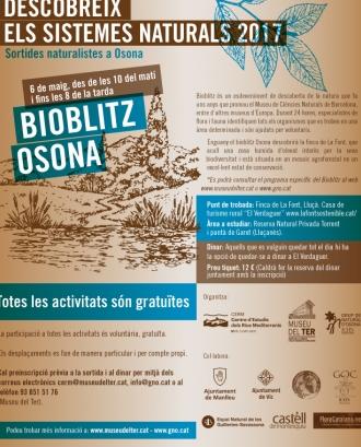 El 6 de maig se celebra el segon Bioblitz Osona amb el Grup de Naturalistes d'Osona (imatge: gno.cat)
