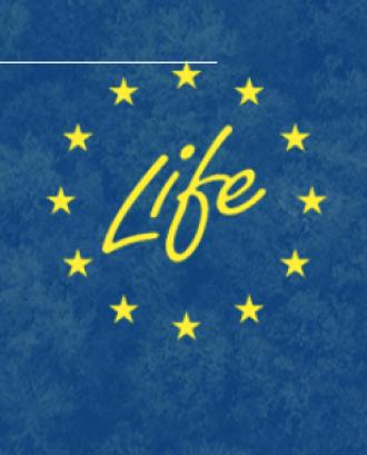 Convocatòria de propostes - Programa Life 2020 - Subprograma Medi Ambient