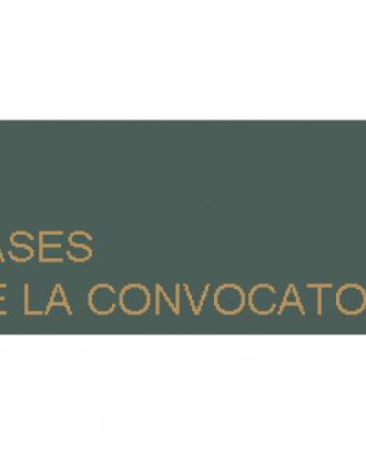 Premis Caser 'Dependencia y Sociedad' 2014